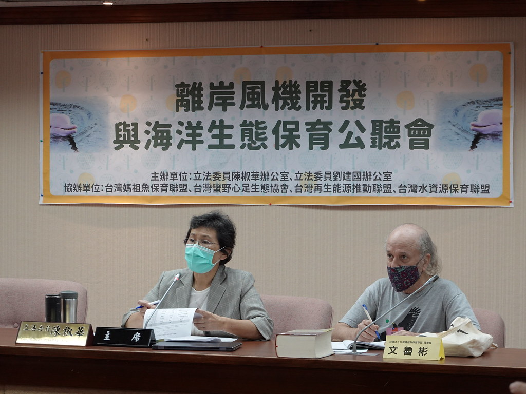 2020年4月30日立委陳椒華舉行「離岸風機開發與海洋生態保育公聽會」。資料照。孫文臨攝。
