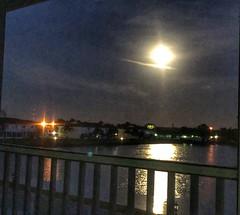 Good morning mr.moon