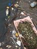 Marine debris in Michigan