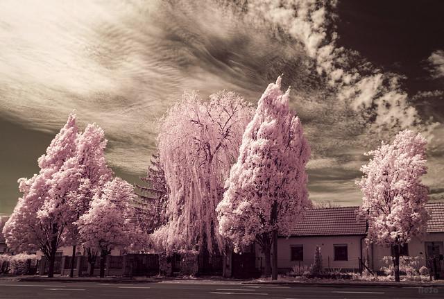 Infrared: Returns