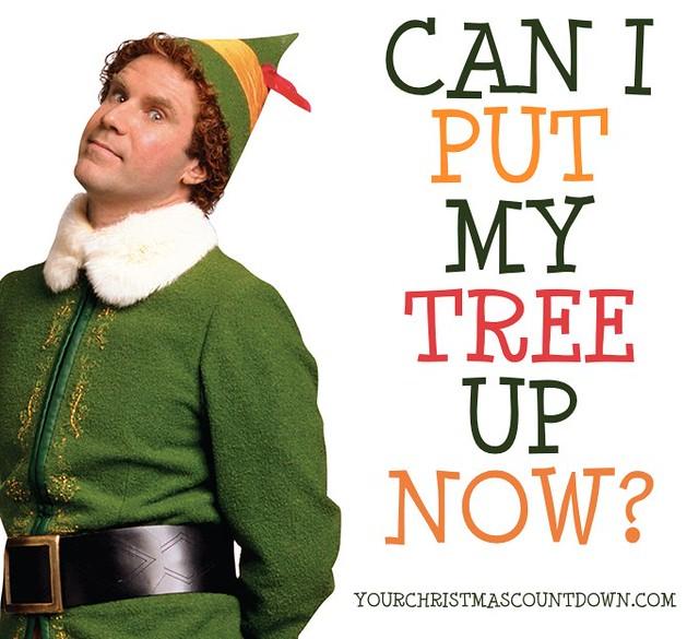 QUARANTINE--TIME TO PUT UP CHRISTMAS TREE