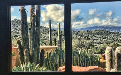 aguadulce california cactusgarden theview ranch