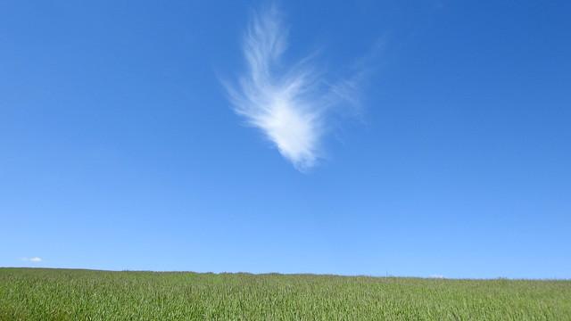 Kleine Wolke - Little Cloud