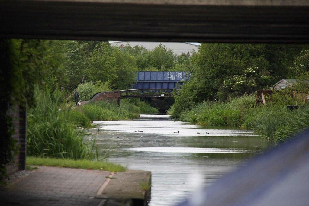 View_looking_back_at roving_bridge_gospel_oak_branch_behind_on_left