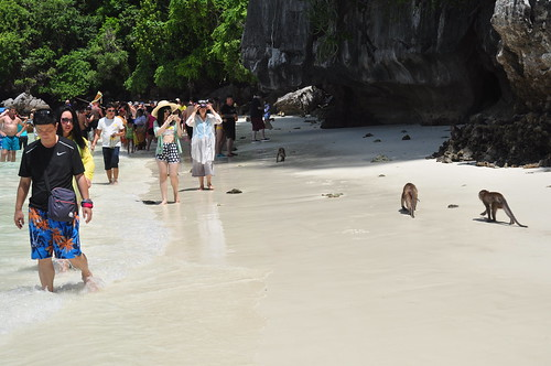 All the people, Monkey Beach