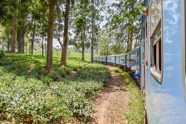 Sri Lanka Ceylon railway - Train to Nanu Oya, Nuwara eliya