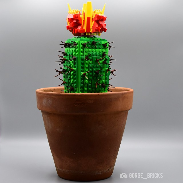 🌼 Flowering Lego Cactus MOC 🌵
