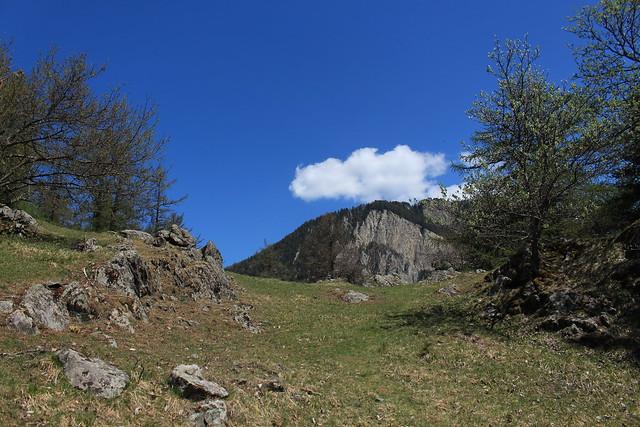 balade sur le Mont Chemin