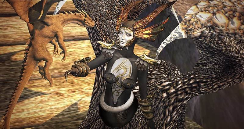 One does not need to be the size of a dragon to have the soul of a dragon ~ Robin Hobb