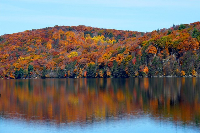 Fall Color Reflection