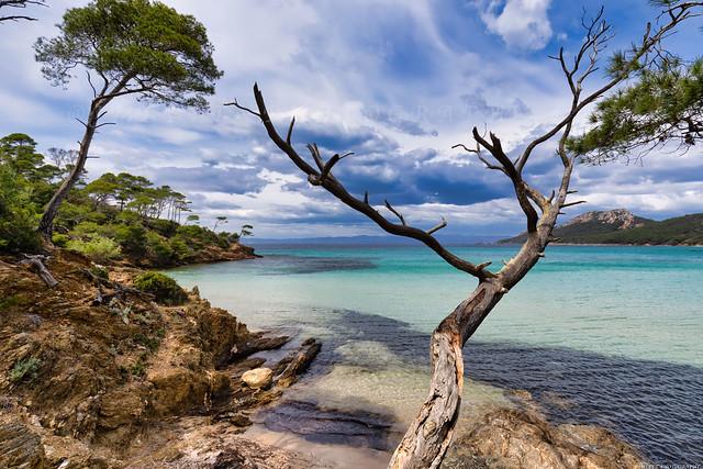 Île de Porquerolles -3D0A8238