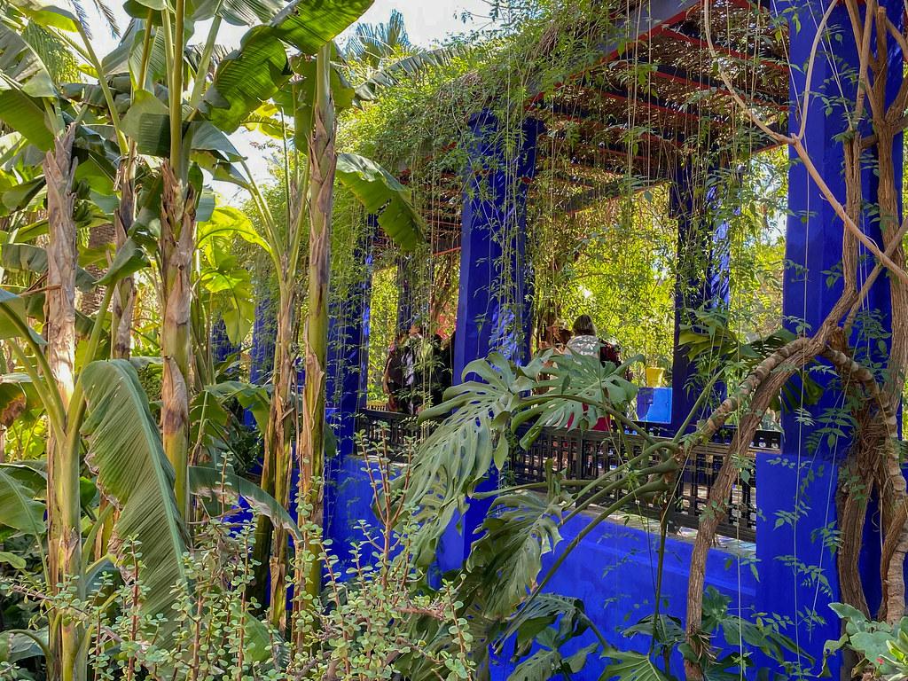 Jardin Majorelle, eli YSL:n puutarha