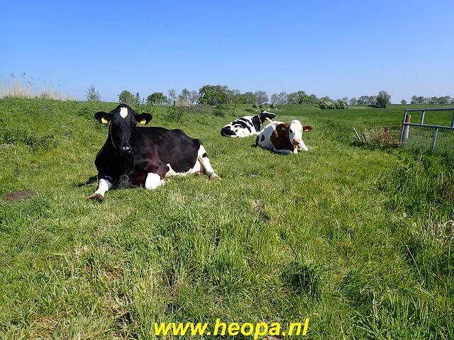 2020-05-07 Pioniers pad  Muiden - Almere (41)