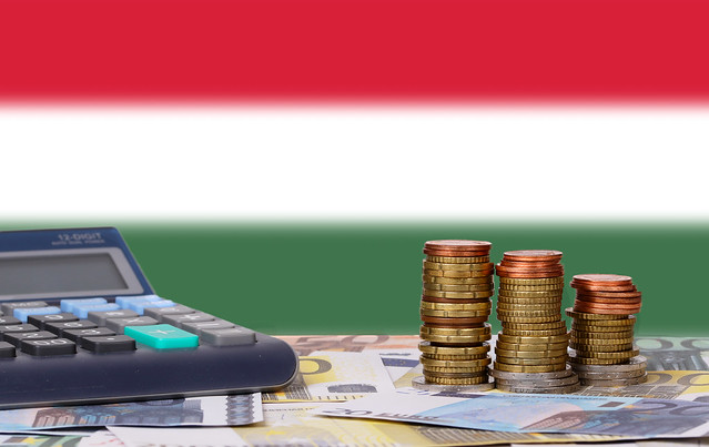 Calculator with money and coins in front of flag of Hungary