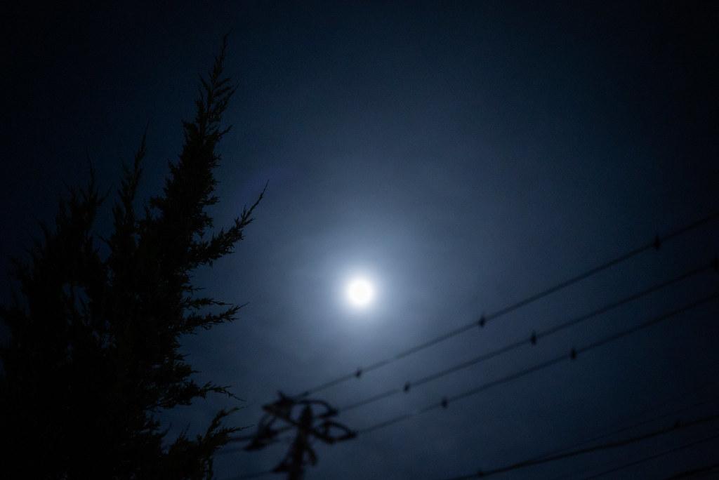 Moon Snap