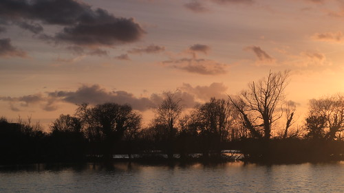 silhouette westsussex water tree trees treelined lake lastlight sunset sussex canon canoneos750d canon750d chichester clouds cloud sky sun yellow shadow efs1855mm reflections reflection calm peaceful peace relaxing relax england englishcountryside evening eveninglight lakes