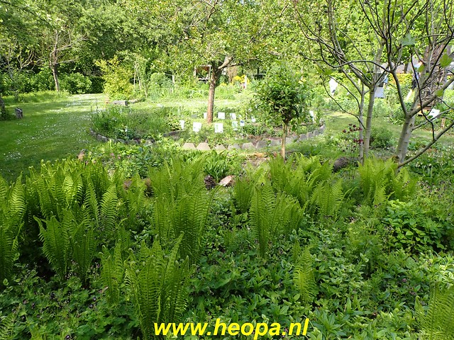2020-05-07 Pioniers pad  Muiden - Almere (112)