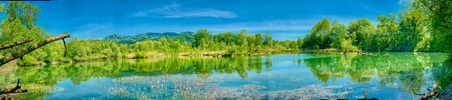 Panorama of a side pocket of the river Inn in spring near Oberaudorf in Bavaria, Germany | by UweBKK (α 77 on )