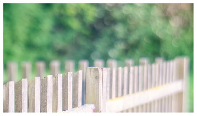 The corner of the fence