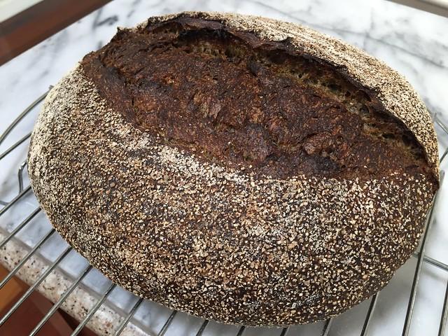 Matcha Buckwheat