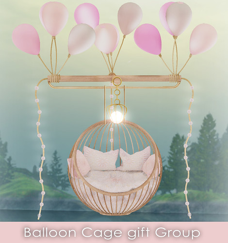 Balloon Cage Gift Group