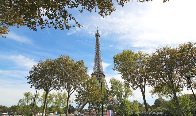 The Amazing Eiffel Tower