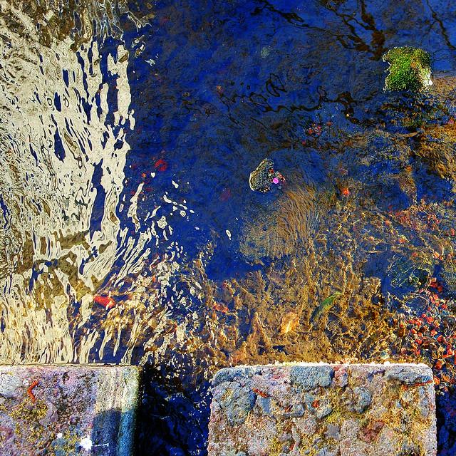 水様=Appearance of water-201/Between flow and stillness