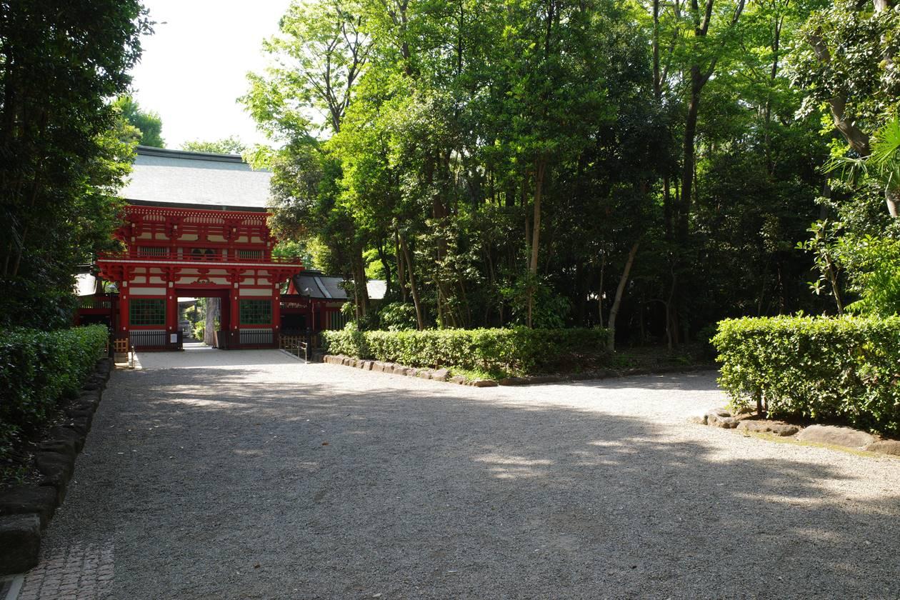井草八幡宮の参道