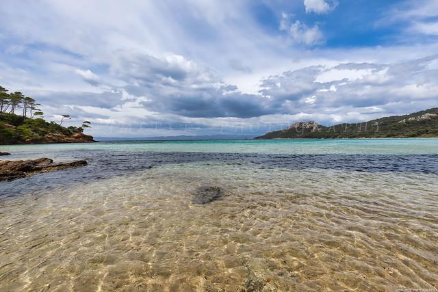 Île de Porquerolles - Plage Notre-Dame plus belle plage d'Europe -3D0A8243