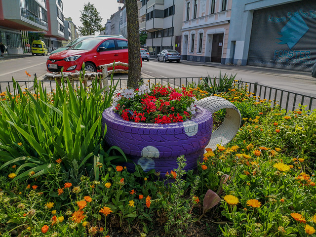 Plants and flowers will always enhance the city streets.