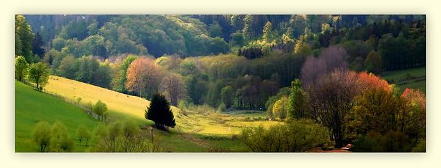 Wiosna w Górach Sowich * EXPLORE