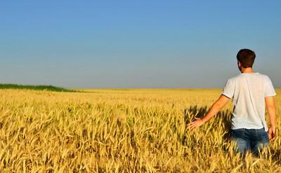 100 mln in agricoltura