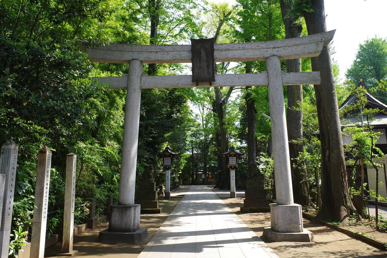 荻窪八幡神社の鳥居