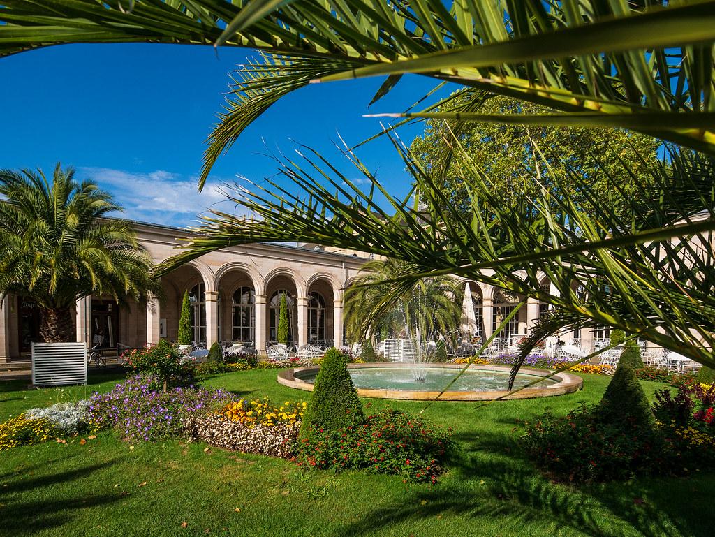 Palm Trees in Bad Kissingen