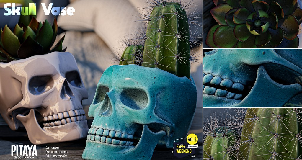 Pitaya – Skull vase → Happy Weekend