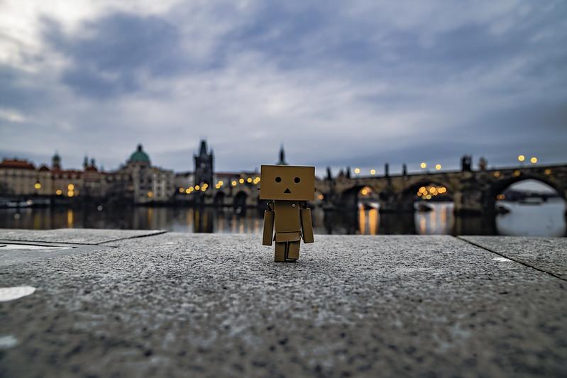 Danbo in Prague