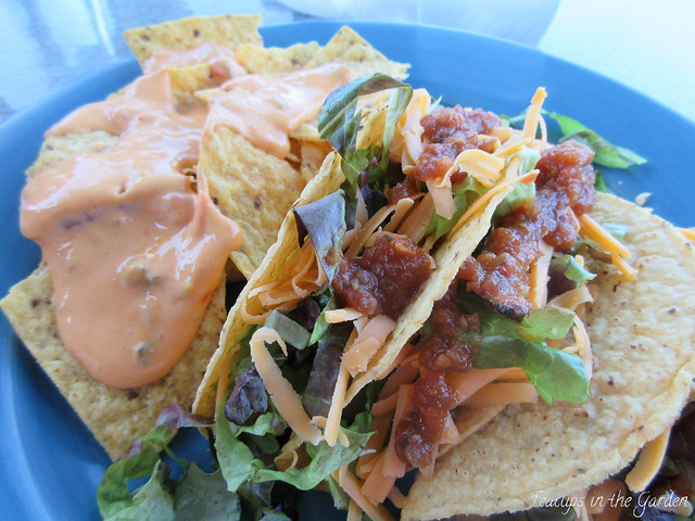 Crispy Beef Tacos with Nachos