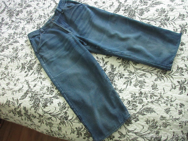 1-Blue Jean Capri Pants