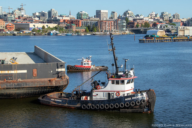 Rose MacKenzie ~ Victoria Upper Harbour