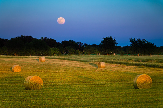 Full Moon Rising over Hay Bales