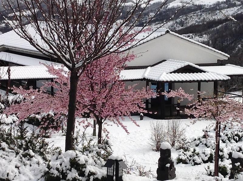Sanboji-inverno 2