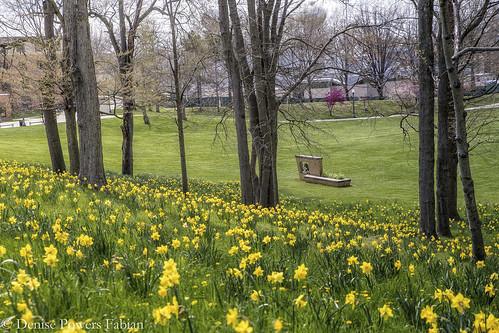 2020 spring may4 historic history kent kentstateuniversity portagecounty nationalregisterofhistoricplaces onethousandgifts 1000gifts