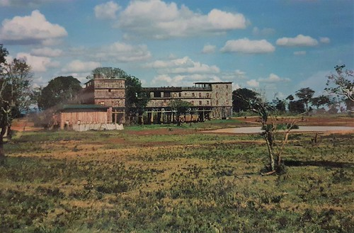 treetopslodge aberdarenationalpark nyeri kenya geocode:accuracy=50meters geocode:method=googleearth geo:country=kenya geo:region=africa