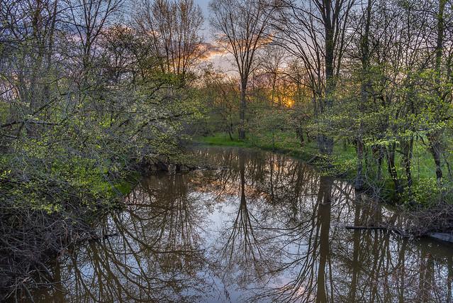 Fresh Spring Morning