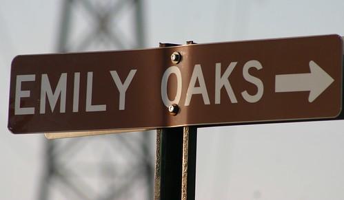 Emily Oaks ->