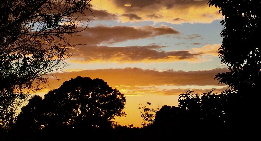 Sunrise - Earlwood - NSW - Au