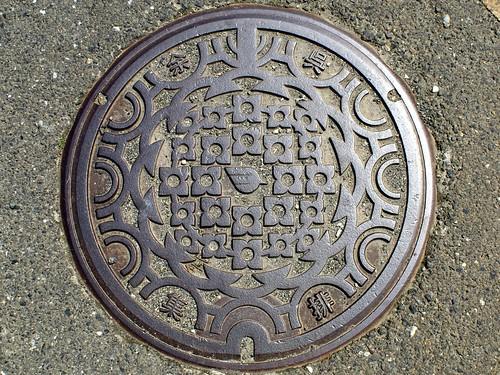 Yogo Shiga, manhole cover (滋賀県余呉町のマンホール)