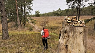 E1 Trail, Lüneburger Heide