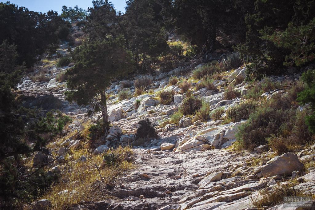 Кипр тропа Адониса