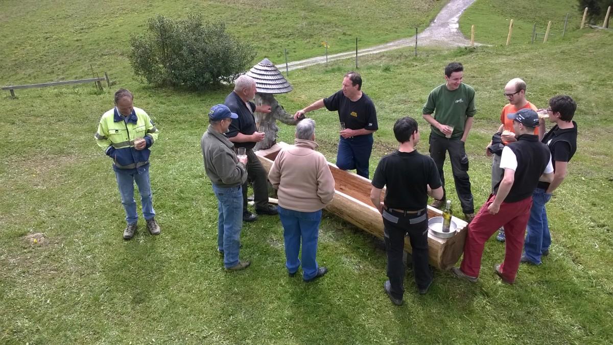 Installation nouveau bassin 2015